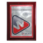 Choice of Digi-Color Plate on Deluxe Board Achievement Awards