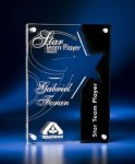 Star Cutout Clear and Black Acrylic Award Achievement Awards